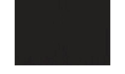 Menyaya_mir_logo2